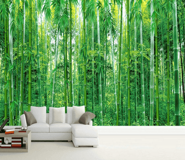 Green Lush Bamboos Wallpaper AJ Wallpaper 2