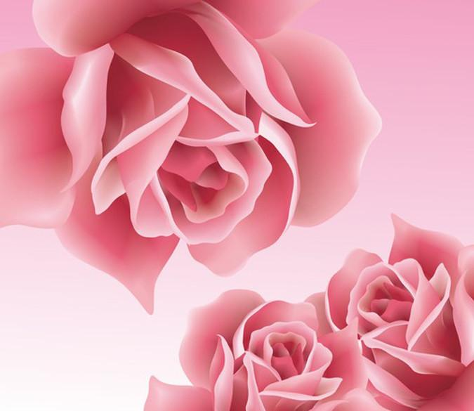 Pink Roses 4 Wallpaper AJ Wallpaper