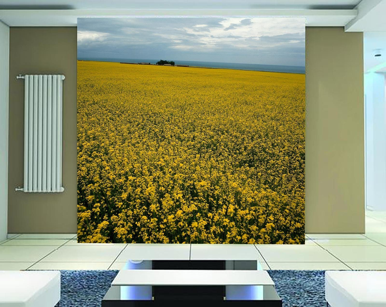 Non woven Wall Mural Photo Wallpaper Poster Picture Image Field Rape