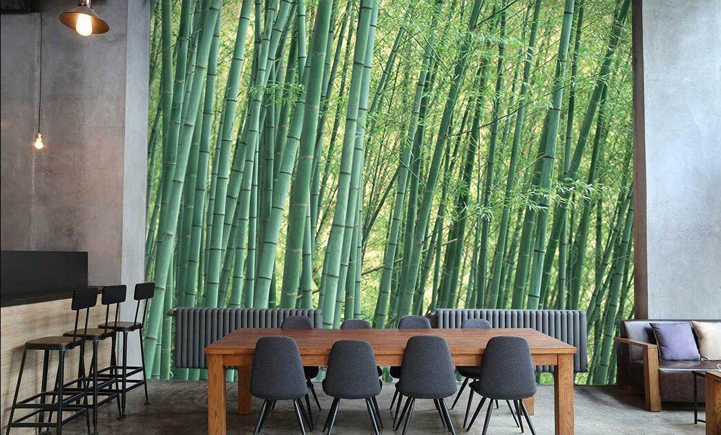 Bamboo Forest 9 - AJ Walls - 3
