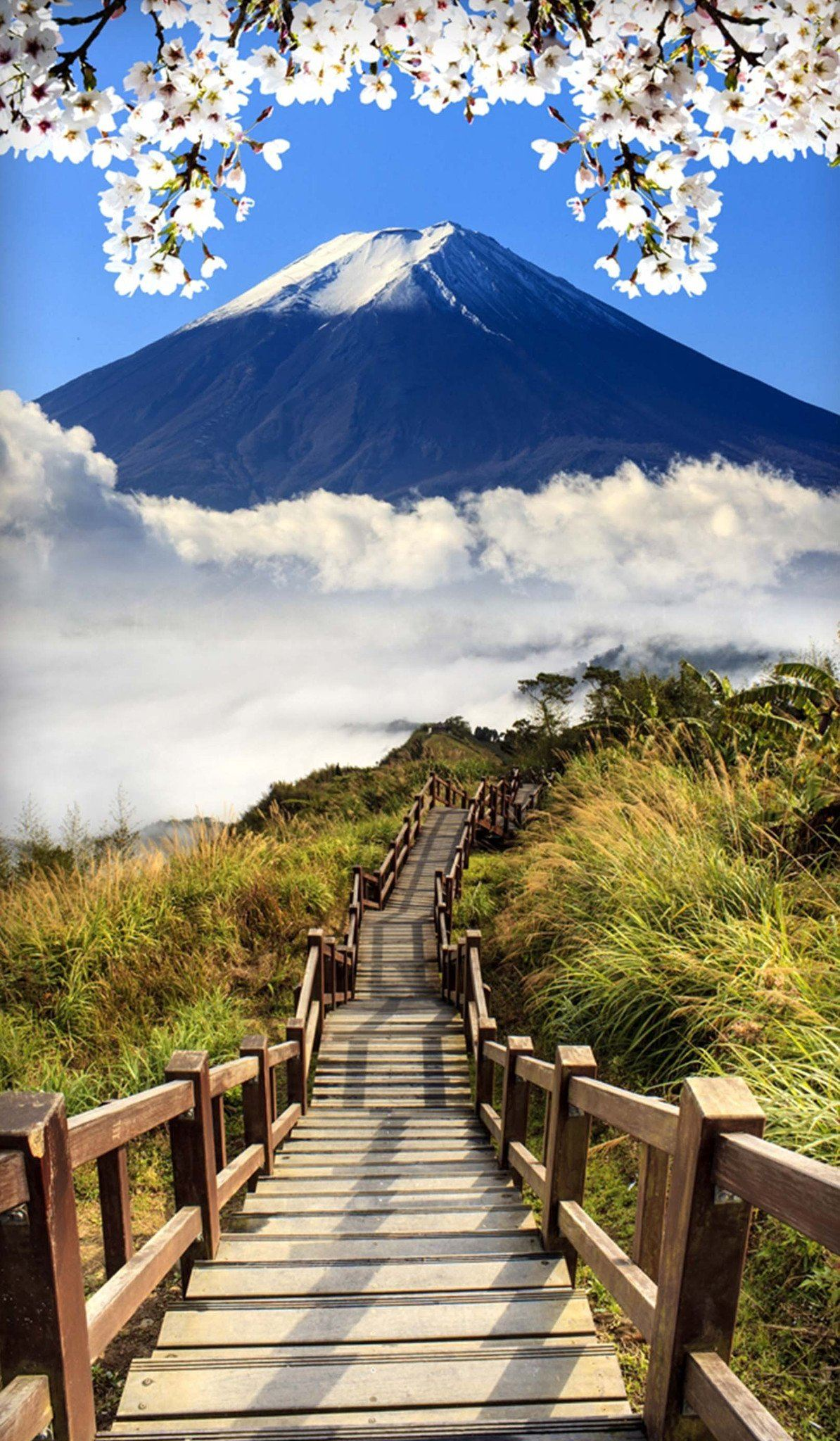 3D Mount Fuji Wooden Stairs 65 Door Mural Wallpaper AJ Wallpaper