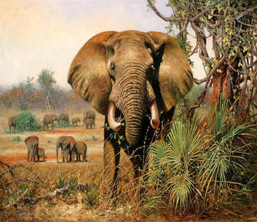 3D Africa Elephants 57 Wallpaper AJ Wallpaper