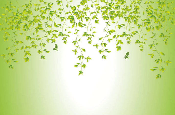 Green Stems 2 Wallpaper AJ Wallpaper