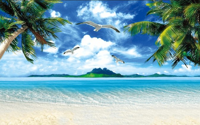 Vast Beach Scenery Wallpaper AJ Wallpaper