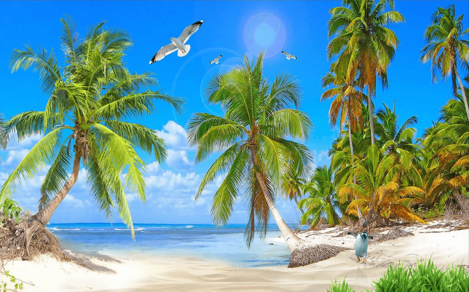Beach Green Coconut Trees - AJ Walls - 3