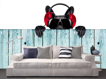 3D Headset 009 Wall Murals