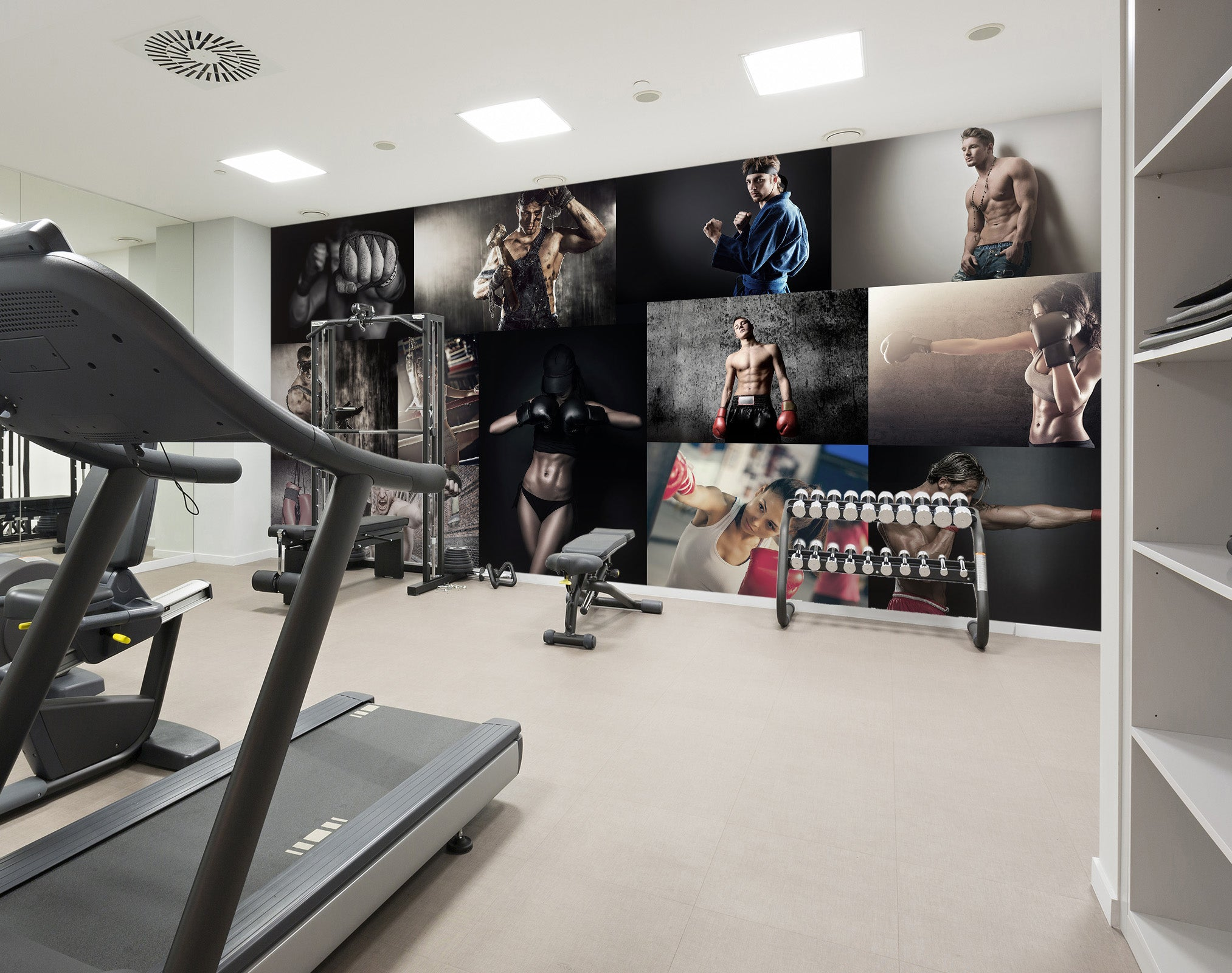3D Exercise 245 Wall Murals