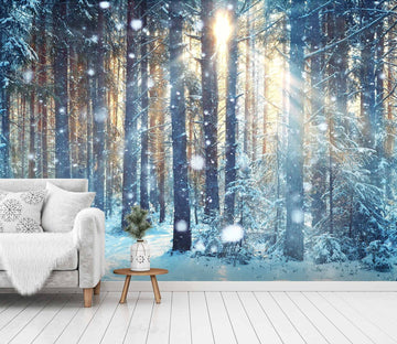 3D Sunshine Forest Snow 707