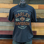 Men's Weathered T-Shirt Front