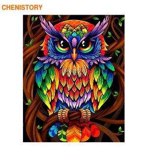 CHENISTORY Frame Color Owl Animals Diy Painting