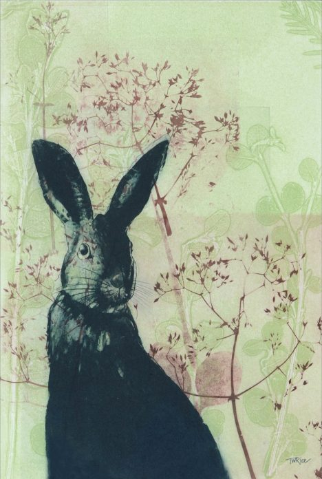 Tea Towel – Wild Rabbit