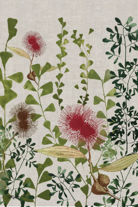 Tea Towel – Hakea