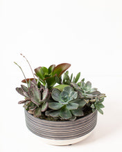 Load image into Gallery viewer, Succulent Platter