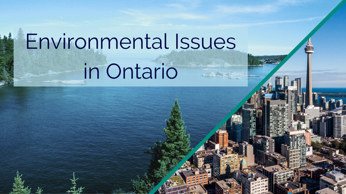 Environmental Issues in Ontario