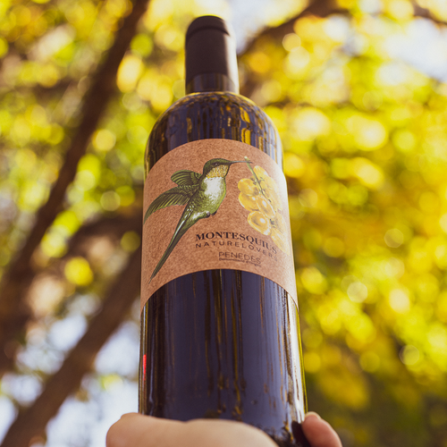 Montesquius Naturelovers Garnacha Tinta eco/vegan 2018 - natureloverswines