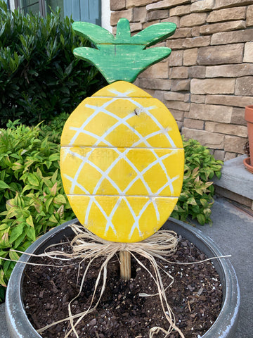 Outdoor Pineapple