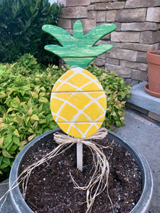 Mini Outdoor Pineapple