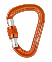 Load image into Gallery viewer, Beal BE SAFE Locking Carabiner