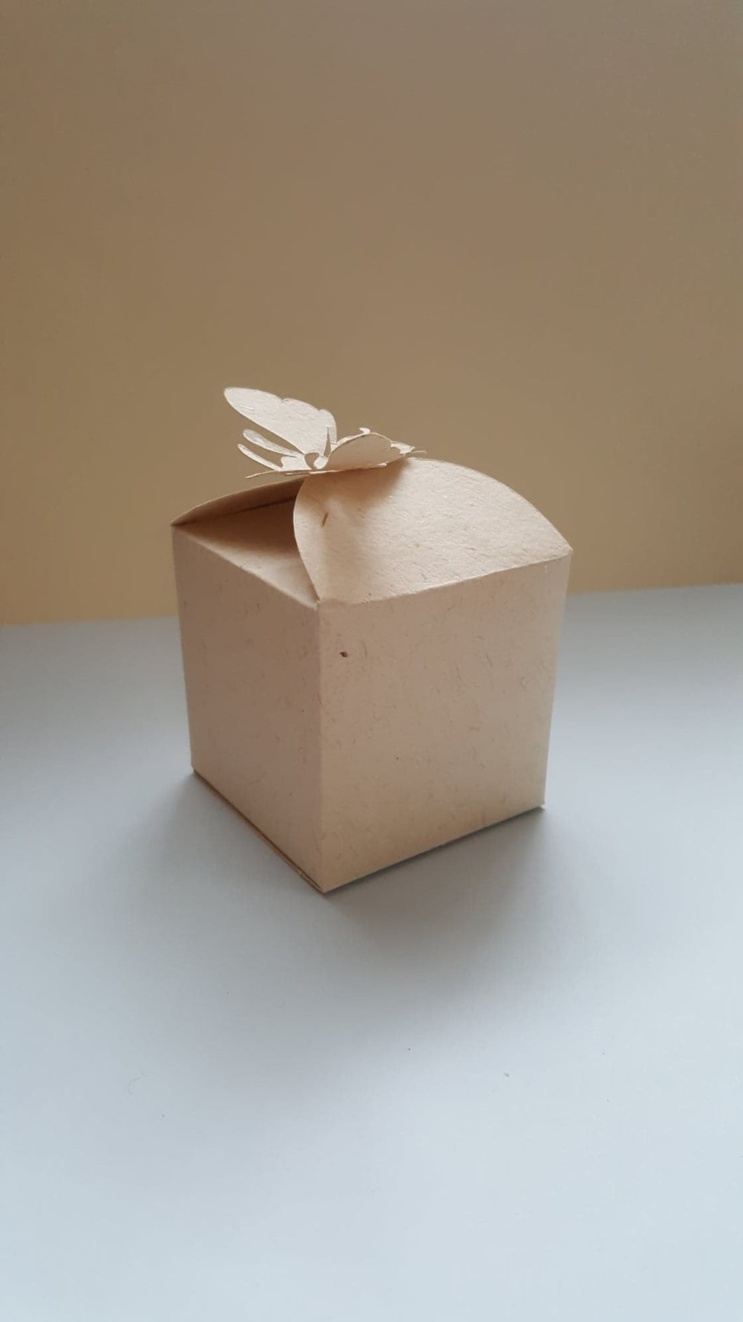 Square gift box with a die cut bee shape lock