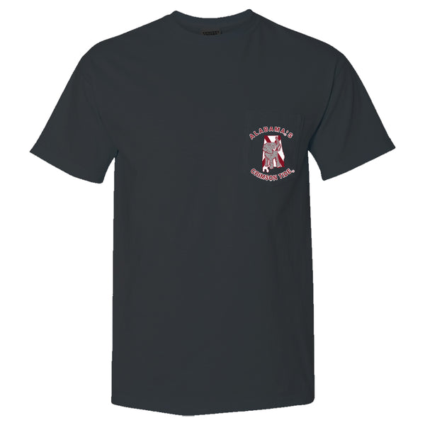 Double Flags |  Unisex Alabama Crimson Tide T-Shirt | Graphite