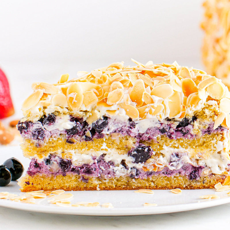 HORATII lounge blueberry cake