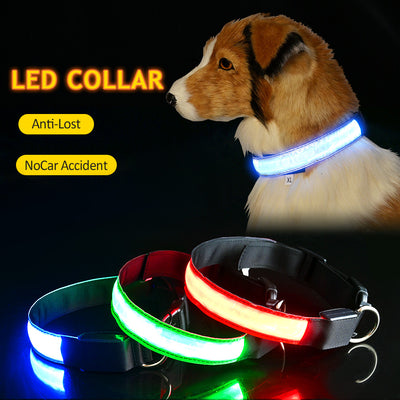 Led Ligh Dog Collar