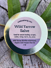 Load image into Gallery viewer, Wild  Yarrow Salve