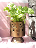 Bette and Arthur Iron and Brass Planter - Justina Blakeney