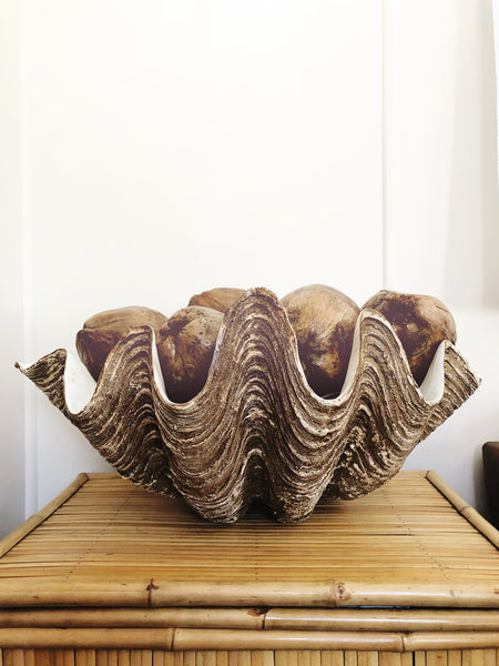 Resin Clam Shell - King Size