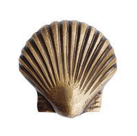 Scallop Shell Knob | by Pineapple Traders
