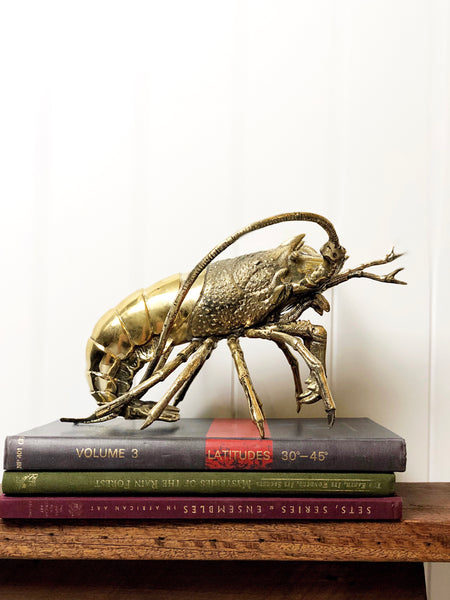 Giant Brass Pacific Lobster