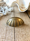 Brass Hamptons style shell handle