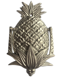 pineapple door knocker brass