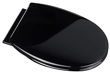 Croydex Hygiene-n-Clean Anti-Bacterial Polypropylene Toilet Seat/Slow Close Hinge, Black
