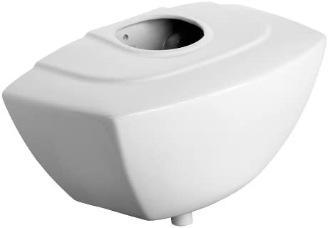 Armitage Shanks S620101 White Mura 9.0 L Urinal Cistern, Wall Mount