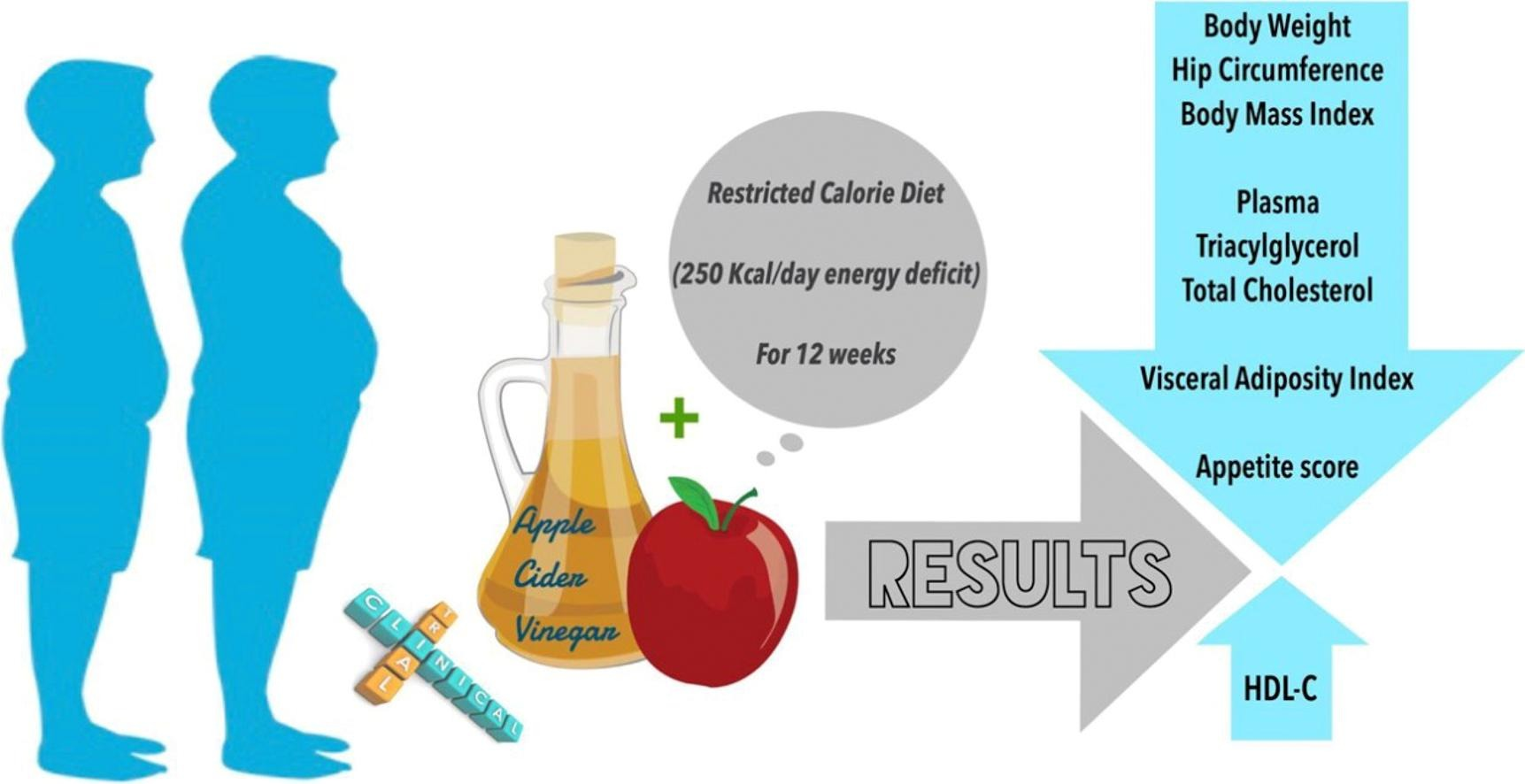 Beneficial effects of Apple Cider Vinegar on weight management, Visceral Adiposity Index and lipid profile in overweight or obese subjects receiving restricted calorie diet: A randomized clinical trial