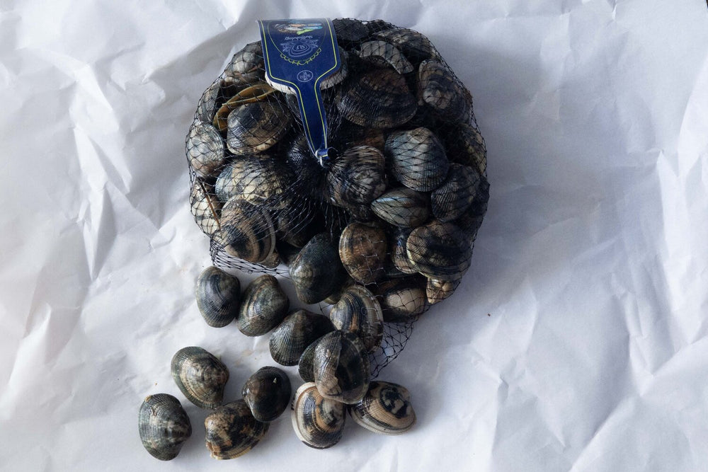 Load image into Gallery viewer, Fresh Dorset clams (500g)