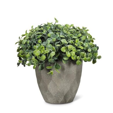 U at Home Teardrop Leaf Plant Pot