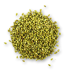 Toasted Wasabi Sesame Seeds 330 ml container