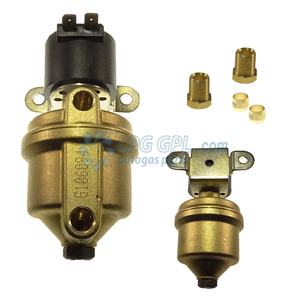 Large Body LPG Shut OFF Valve 6mm IN 6mm Out With Filter 12V 10W