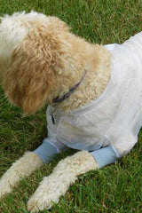close up of dog wearing Bug Baffler insect protective jacket for pets
