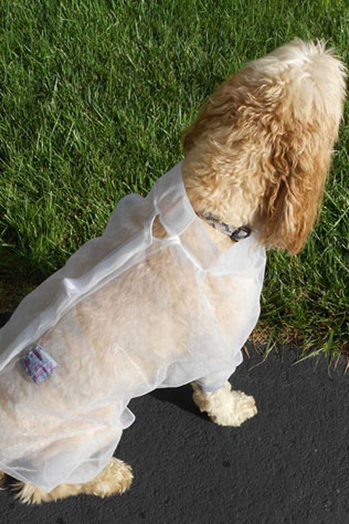 Dog wearing Bug Baffler insect protection jacket