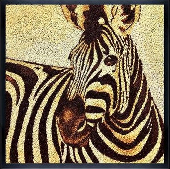 Zebra paintings and animal paintings for sale madrid