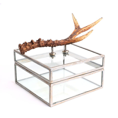 Glass box with Faux Antler Handle