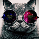 Galaxy Glasses Cat Pop Art Canvas Oil Paintings