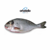 "Seabream ""Orbetello"" from Italy 500g"