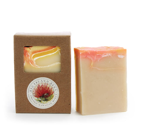 mango papaya tropical handmade soap