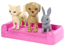 Load image into Gallery viewer, BARBIE Plan 'N' Wash Pets Doll and Playset