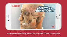 Load image into Gallery viewer, OOBEDU Know Our Anatomy Flash Card