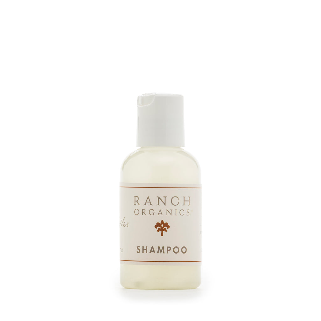 Travel Shampoo and / or Conditioner